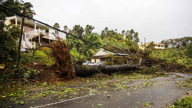 BILAN POST-OURAGAN : Guadeloupe, comment vas-tu ?
