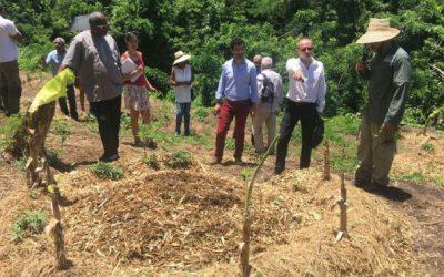 Une ferme agro-écologique créée au Prêcheur